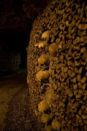 Skulls line the femur wall